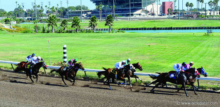 2-year-old horse dies after Los Alamitos race