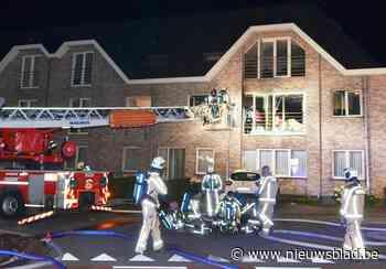 Bewoner komt om het leven bij brand in appartement in Zingem