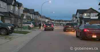 Calgary police investigate Friday morning shooting in Skyview Ranch - Global News