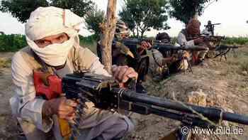 Putin bot laut Geheimdienstberichten Taliban Kopfgeld für US-Truppen - BILD