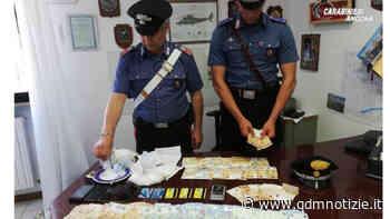 CHIARAVALLE / Dieci dosi di cocaina in casa, arrestato dai Carabinieri - QDM Notizie