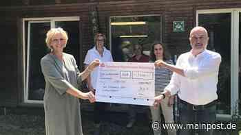 Das Hilfswerk des Lionsclub Ochsenfurt spendet 1000 Euro - Main-Post