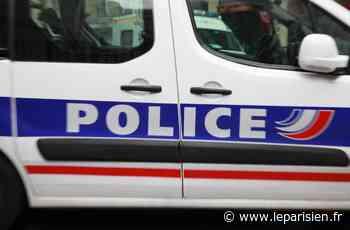 Pris en chasse depuis La Garenne-Colombes, il saute d'une voiture en marche pour fuir la police à Bezons - Le Parisien
