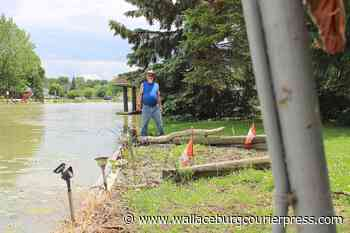 Wallaceburg resident speaks out on high water levels after property floods - Wallaceburg Courier Press