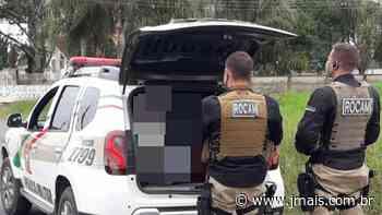 PM prende homem com mandado de prisão por furto em Canoinhas - JMais