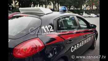 Putignano ( Ba) - Sequestro armi e droga. Due arresti - Canale7