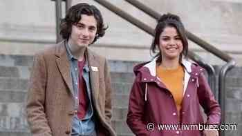 Selena Gomez And Timothée Chalamet: Facts You Probably Didn't Know About Them - IWMBuzz