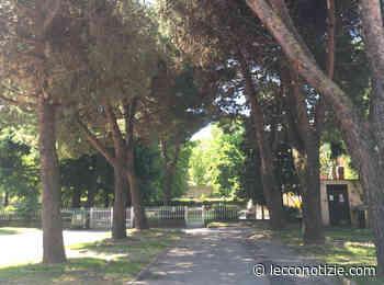 """Merate: sabato in viale Verdi l'evento """"InAlberiAmoCi"""" - Lecco Notizie"""