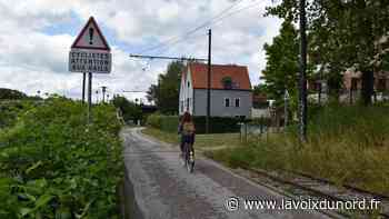 Wambrechies: entre les rails du tramway et les cyclistes, la cohabitation peut être douloureuse - La Voix du Nord
