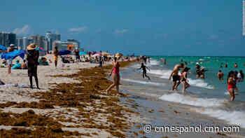¿Qué hay detrás del aumento de casos de covid-19 en Florida? - CNN