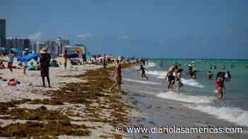 Condados en Florida ordenan uso de máscaras tras escalada de contagios - Diario LAs Americas