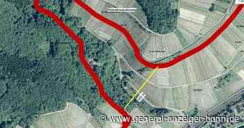 Landesgartenschau in Bad Neuenahr-Ahrweiler: Planungen für Hängeseilbrücke im Adenbachtal wackeln - General-Anzeiger Bonn