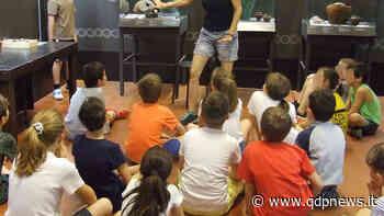Montebelluna, un'estate insieme tra scienze e storia con Child Room 2020 al Museo Civico e al MeVe - Qdpnews.it - notizie online dell'Alta Marca Trevigiana