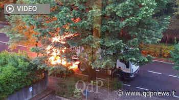 Boato e fiamme all'alba a Montebelluna, auto contro un mezzo Contarina: ferita giovane donna di Farra di Soligo - Qdpnews.it - notizie online dell'Alta Marca Trevigiana