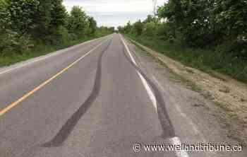 Wainfleet to crack down on illegal activity - WellandTribune.ca