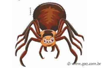 A aranha no sapato - GAZ - Notícias de Santa Cruz do Sul e Região - GAZ