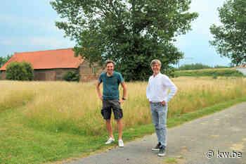 Begraafplaats Harelbeke wordt uitgebreid met meer aandacht voor groen - Krant van Westvlaanderen