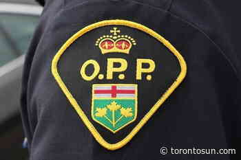 Four sought in second Caledon attempted carjacking - Toronto Sun