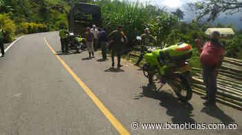 En Riosucio capturaron a siete personas por cortar 300 guaduas - BC Noticias