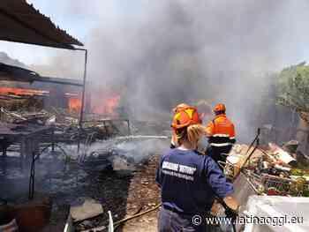Incendio in periferia, brucia di tutto. Nube di fumo alle porte della città - latinaoggi.eu
