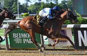 Englehart considers Grade 1 test for Captain Bombastic - Horse Racing Nation