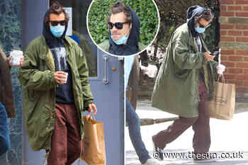 Harry Styles covers up with a mask, hoodie and shades during London shopping trip - The Sun