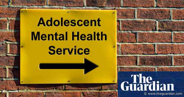 Boost NHS mental health youth services to tackle radicalisation, say psychiatrists