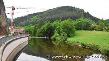 Schiltach - Honorarkosten zu teuer? - Schwarzwälder Bote