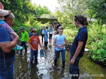 Geisingen: Keine Ausflüge und kein Schwimmspaß: Doch trotz Corona stellt Geisingen ein Ferienprogramm auf die Beine - SÜDKURIER Online