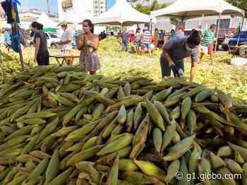 Feira do Milho registra queda de vendas em 2020 em Natal - G1