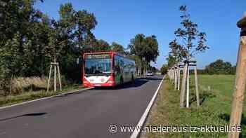Roggosen, Skadow, Kolkwitz. Haltestellenänderungen bei Cottbusverkehr - NIEDERLAUSITZ aktuell