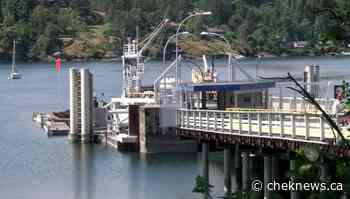 Man arrested after reports of brandishing a knife at Brentwood Bay ferry terminal - CHEK