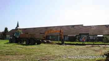 Beuvry-la-Forêt: les travaux de terrassement aux Hortensias ont débuté - La Voix du Nord
