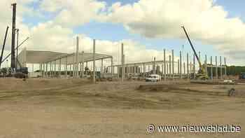Logistieke wereldspeler plant gloednieuw distributiecentrum in Tessenderlo