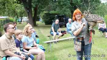 Dreieich: Falknerin Zieten beeindruckt mit Schützlingen die Besucher - op-online.de