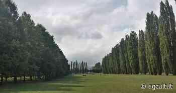 Sassuolo, Montevecchi-Lanzi (M5S): no a costruzione di 49 villette nel Parco Ducale - AgCult
