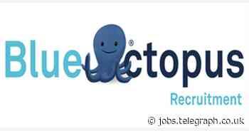 Blue Octopus Recruitment Limited: Gas Compliance Officer (20 hours per week)