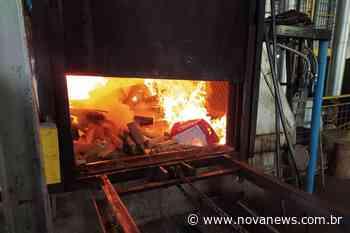 Polícia Civil de Nova Andradina realiza incineração de mais de 190 quilos de drogas - Nova News - Nova News