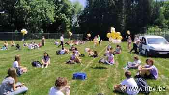 Afscheid van de tweedejaars in VMS (Zonhoven) - Het Belang van Limburg