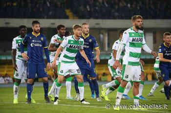 Sassuolo-Verona, vota la FORMAZIONE DEI TIFOSI! - Calcio Hellas