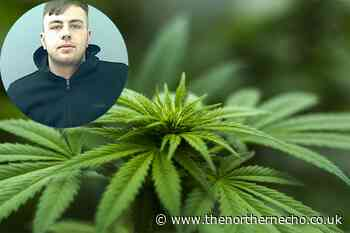 'Selfish and hedonistic' Ingleby Barwick drug dealer jailed for 18 months - The Northern Echo
