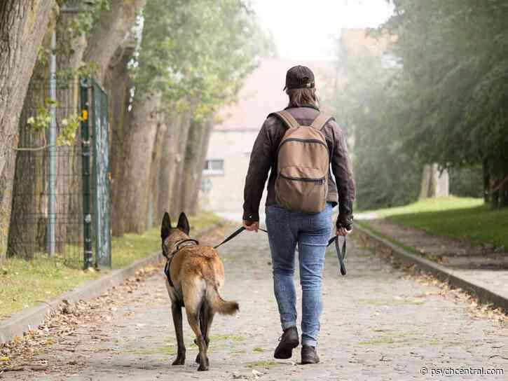 Walking Shelter Dogs May Ease Veterans' PTSD Symptoms