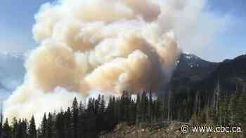 Number of wildfires, hectares burned in B.C. so far 'significantly' down over 10-year average
