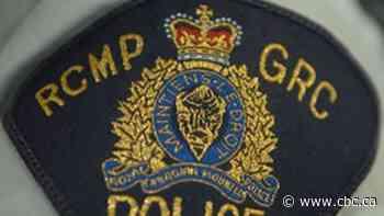 Pit bull kills man in Kamloops, B.C.