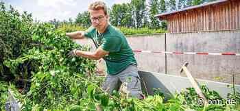 Walzbachtal: Bei Wertstoffabgabe gelten wegen Corona strenge Regeln - BNN - Badische Neueste Nachrichten