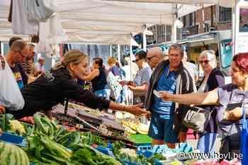 Beringse markt verhuist tijdelijk - Het Belang van Limburg
