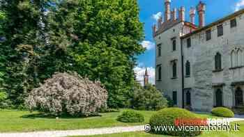 Castello di Thiene: laboratorio sulle erbe per i piccoli e visita al castello per i grandi - VicenzaToday