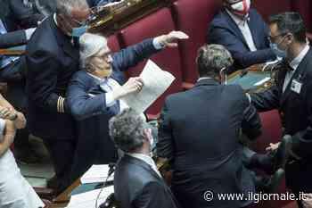 Sono diventato un'opera d'arte tra Raffaello e Caravaggio - ilGiornale.it