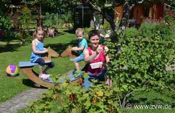 Warum Kleingartenanlagen in Schwaikheim neue Fans gewinnen - Schwaikheim - Zeitungsverlag Waiblingen