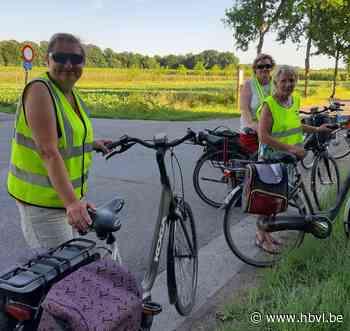 Ferm Alken weer actief na corona-lockdown (Alken) - Het Belang van Limburg Mobile - Het Belang van Limburg